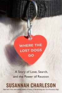 Where the lost dogs og