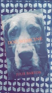 Dog Medicine 2